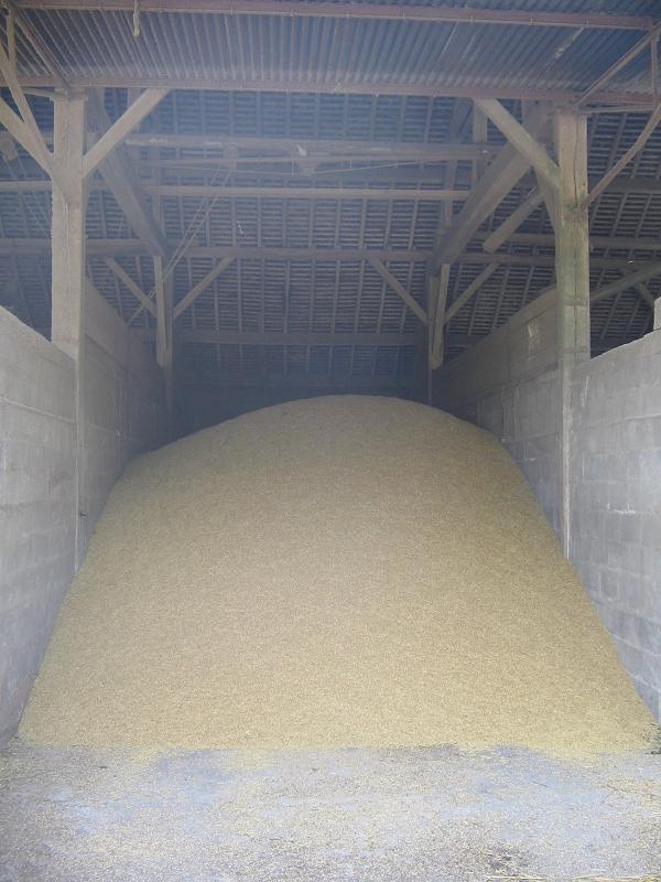 Stocks céréales